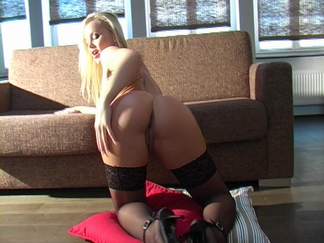 Tasty Light-haired Porn Industry Star In Stocking Silvia Saint Taunting Us Along With Her Obese Ass